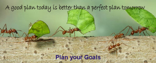 Plan your Goals